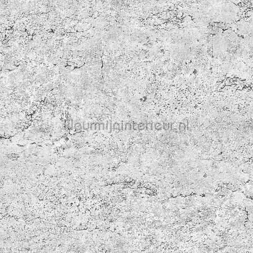 Concrete grey behang FD22312 Interieurvoorbeelden behang Dutch Wallcoverings