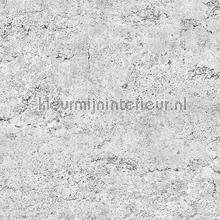 Concrete grey behang Dutch Wallcoverings Industrieel