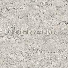 Concrete behang Dutch Wallcoverings Industrieel