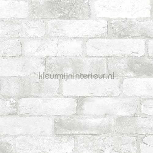 Bricks light grey tapet FD22321 Reclaimed Dutch Wallcoverings