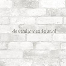 Bricks light grey carta da parati Dutch Wallcoverings Reclaimed FD22321