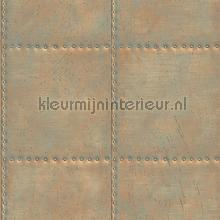 Oxidized metal plate with nails behang Dutch Wallcoverings Reclaimed FD22344