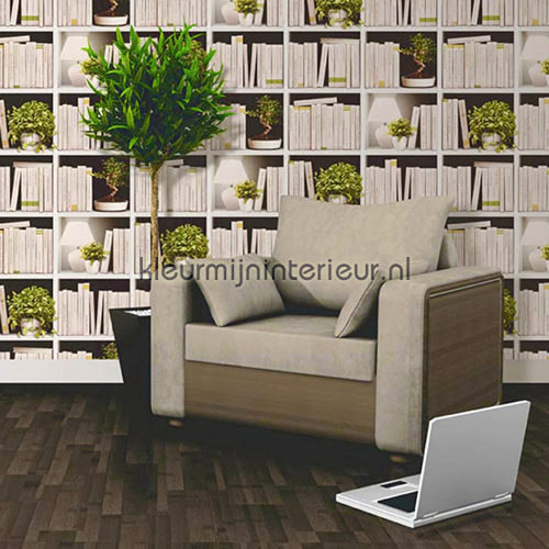 Emejing behang boekenkast print pictures trend ideas for Behang trapgat