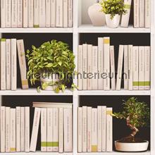Boekenkast en plantjes tapeten Dutch Wallcoverings Replik J79307
