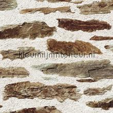 Oude muur met stenen tapeten Dutch Wallcoverings Replik J98707