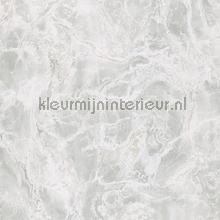 Marmer behang tapet Eijffinger Resource 369001