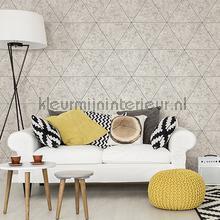 Natuursteen met diagonalen behang Dutch Wallcoverings Modern Abstract