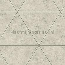 66364 behang Dutch Wallcoverings Stenen