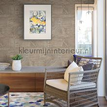 66369 papier peint Dutch Wallcoverings Restored 2540-24021