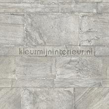 Natuursteen muur papier peint Dutch Wallcoverings Restored 2540-24023