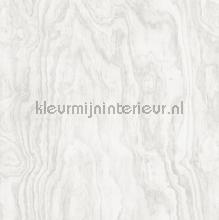 Grote houtnerf structuur papier peint Dutch Wallcoverings Restored 2540-24039