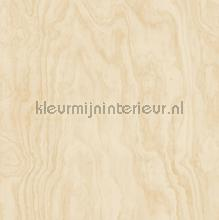 Grote houtnerf structuur papier peint Dutch Wallcoverings Restored 2540-24042