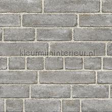 Gladde grijze bakstenen papier peint Dutch Wallcoverings Restored 2540-24050