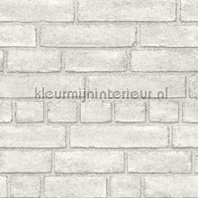Gladde lichte bakstenen papier peint Dutch Wallcoverings Restored 2540-24051