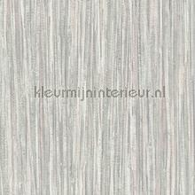 88197 behaang BN Wallcoverings Engelse blukskes