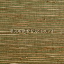 Zeegras donker groen tapet Rodeka Savanna GPW12-1004