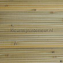 Bamboe tapet Rodeka Savanna GPW35-501