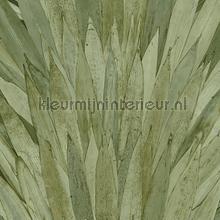 Abanico behang Arte Selva 34001