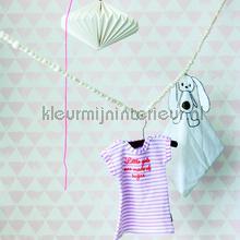 Driehoekjes roze behang Onszelf Baby Peuter