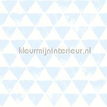 Driehoekjes licht blauw carta da parati Onszelf sale wallcovering
