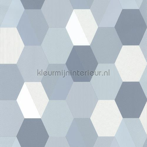 Hexajong behang spa100109909 Interieurvoorbeelden behang Caselio