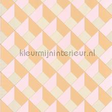 3d diagonaal raster tapet Caselio Spaces spa100124250