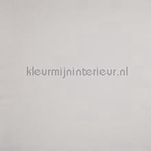 Stevige gladde vliesvinyl licht taupegrijs tapet Caselio Spaces spa64521682