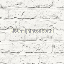 Geschilderde lichte muur tapet Hookedonwalls Splendour SD3701