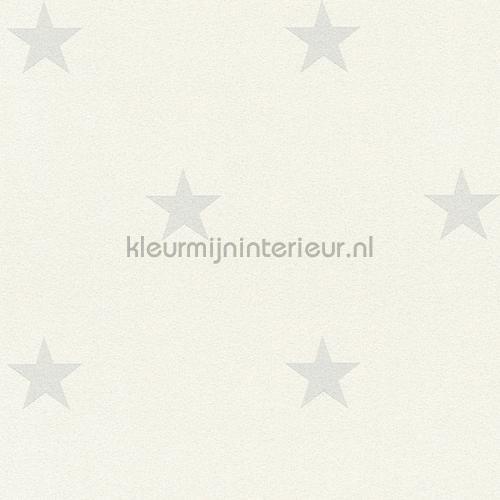 Glitter sterren wit grijs behang 35991-3 AS Creation