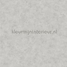 Betonlook zilvergrijs tapet Eijffinger Stature 382562