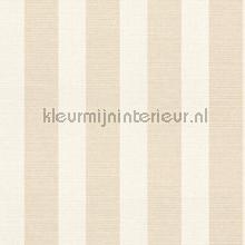 strepen 6 cm papel de parede Rasch Strictly Stripes 6 228655