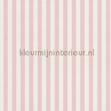 strepen 2 cm papel de parede Rasch Strictly Stripes 6 289045
