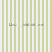 strepen 2 cm papel de parede Rasch Strictly Stripes 6 289106