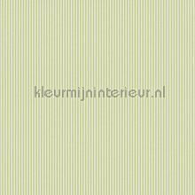 strepen 5 mm papel de parede Rasch Strictly Stripes 6 289120