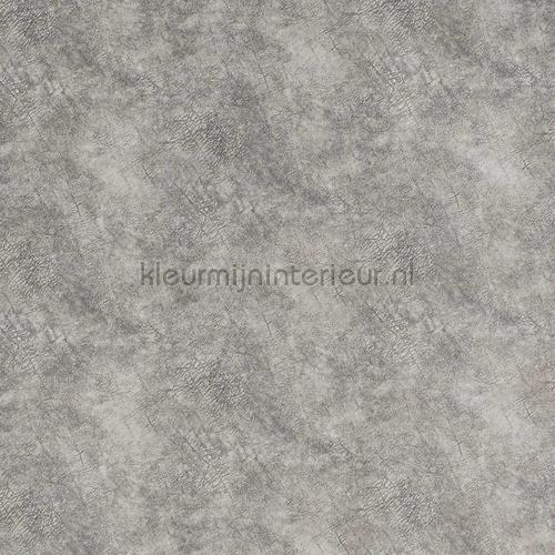 Suave Light grey carta da parati suave-18 speciale DWC