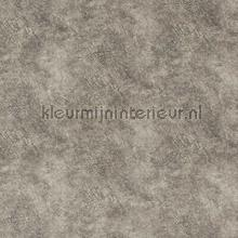 Suave Taupe behang DWC Zoffany