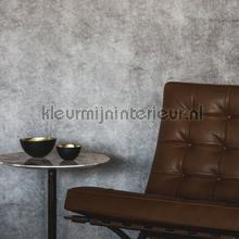 Suave Light grey wallcovering DWC Veloute Flock
