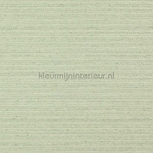 carta da parati suit-04 speciale DWC