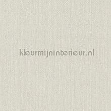 100494 carta da parati BN Wallcoverings Terra 34550