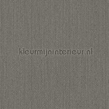 100497 carta da parati BN Wallcoverings Terra 34553