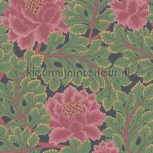 Aurora wallcovering Cole and Son all images