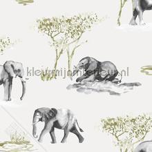 Olifanten aquarel schets tapeten Behang Expresse weltraum