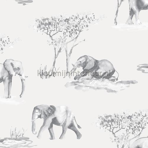 Olifanten schets tapet 27145 Thomas Behang Expresse