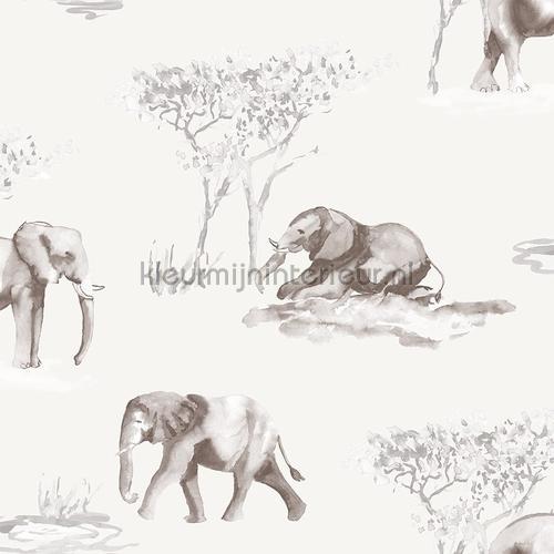 Olifanten schets tapet 27146 Thomas Behang Expresse