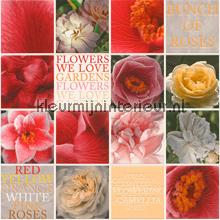 We love roses behang Rasch behang