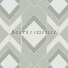 helix tapet Hookedonwalls Tinted Tiles 29034