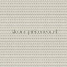blend tapet Hookedonwalls Tinted Tiles 29052