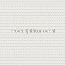 blend tapet Hookedonwalls Tinted Tiles 29054