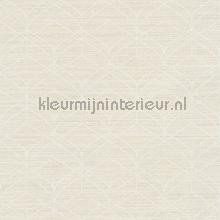 Grafische belijningen wallcovering AS Creation Titanium 2 360044