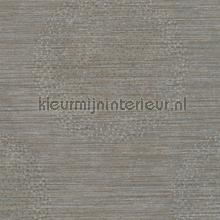 Hidden circles wallcovering AS Creation Titanium 2 360053
